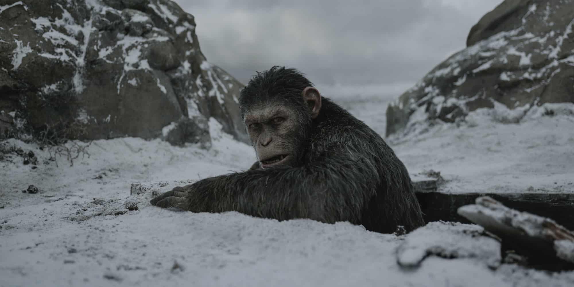 War For The Planet Of The Apes je favoritom na výhru najlepších efektov na oscaroch 2018!