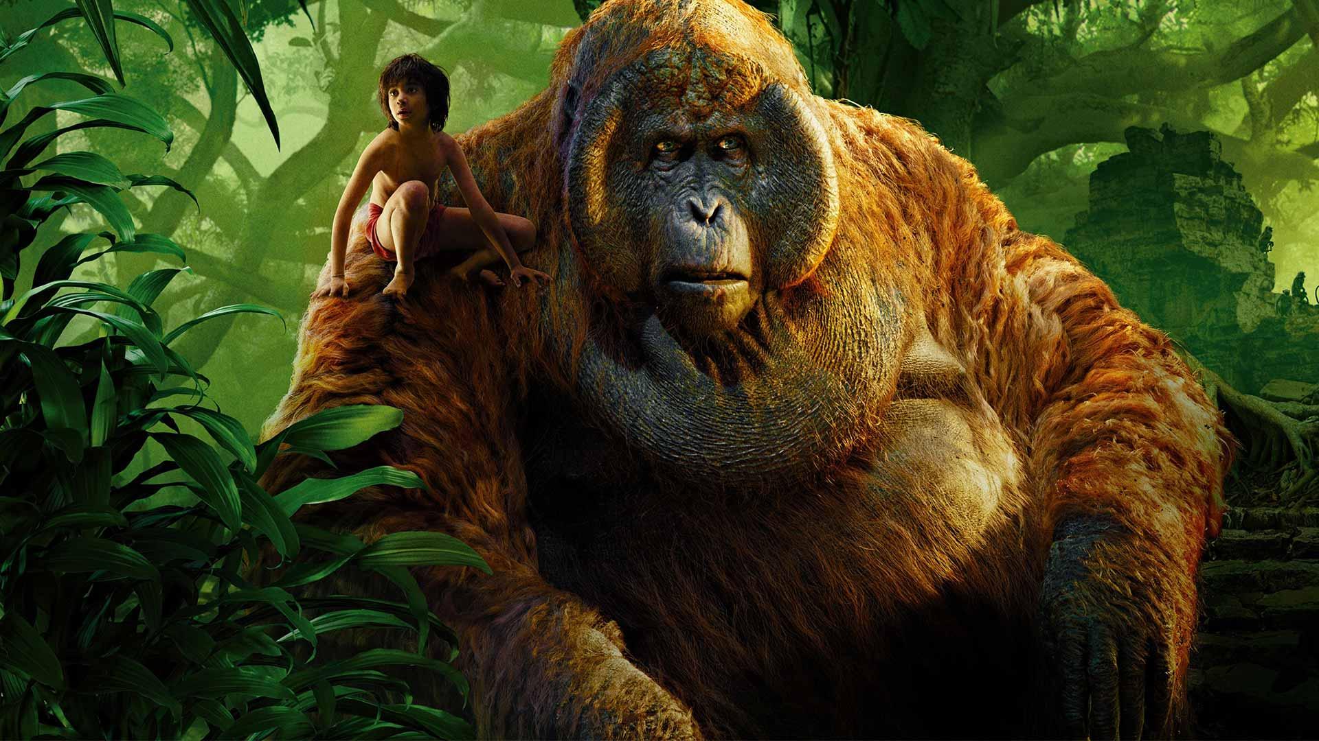 kniha džunglí 2