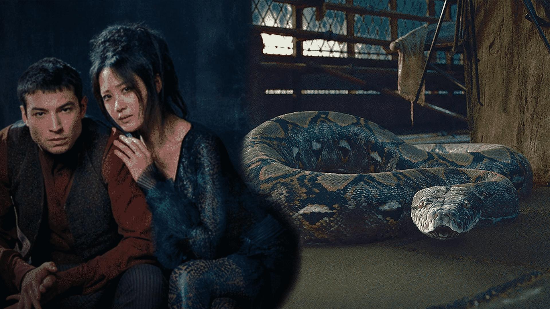 Akú postavu si vo filme Fantastické Zvery 2 zahrá Claudia Kim