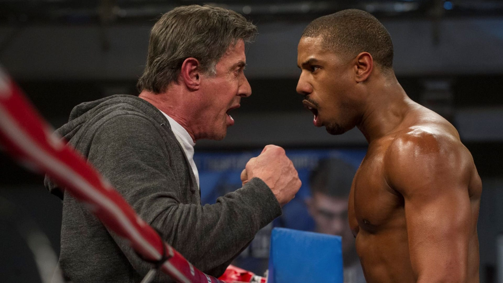 film creed 2
