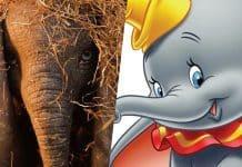 trailer k hranému Disney filmu Dumbo