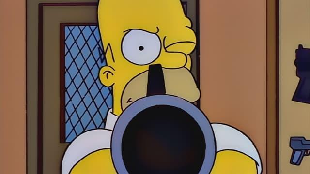 Homer a zbraň
