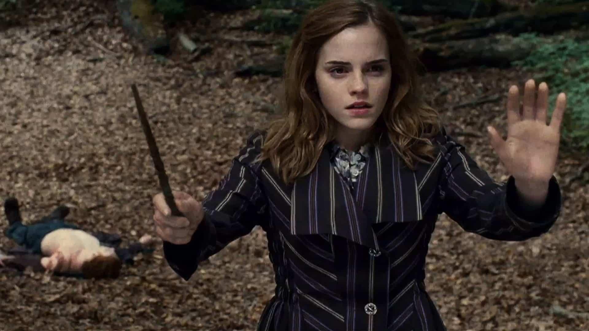 Harry a Hermiona