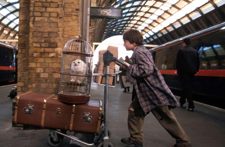 Harry Potter a kameň mudrcov kniha vs film
