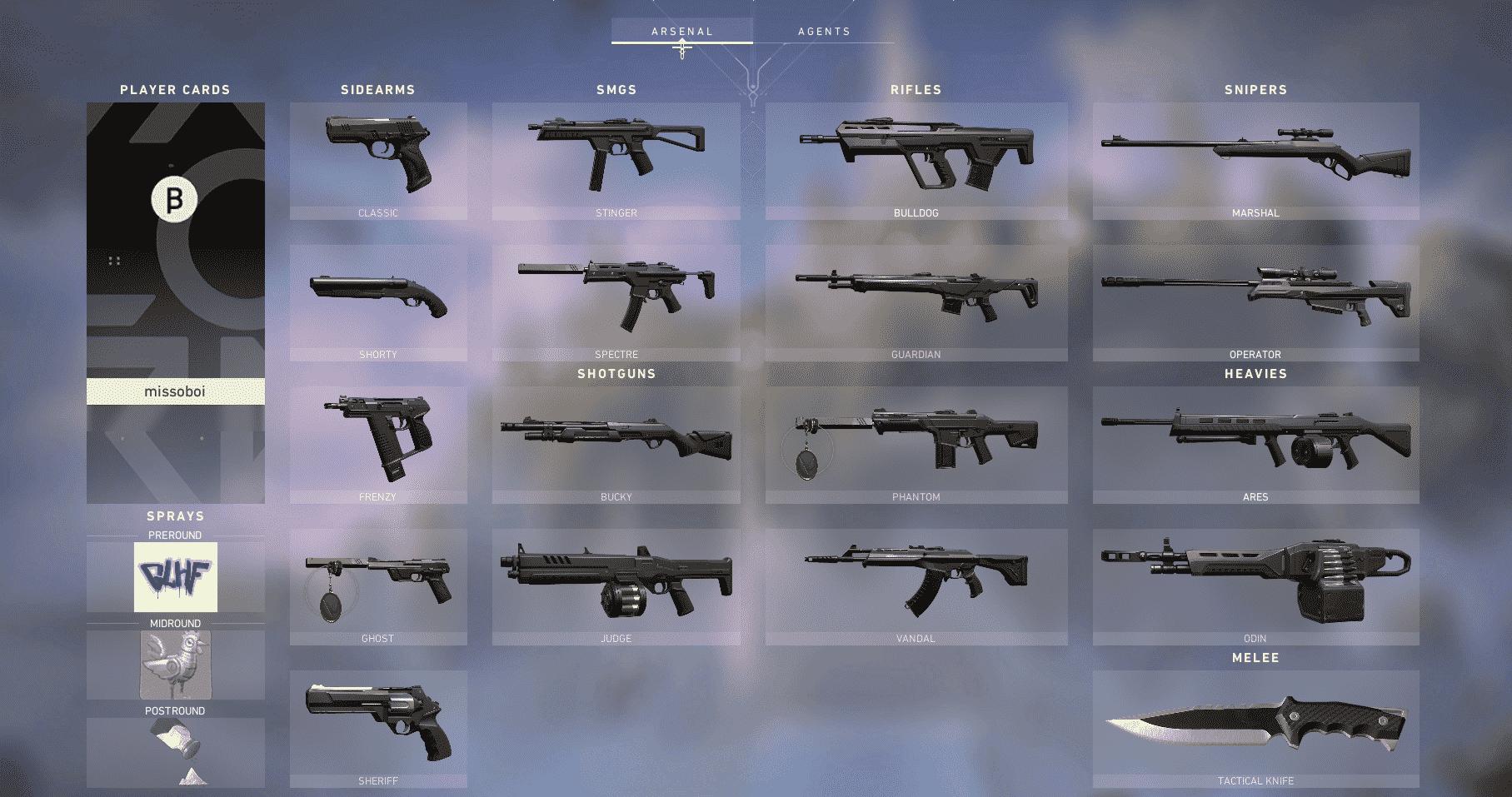 Valorant arsenal