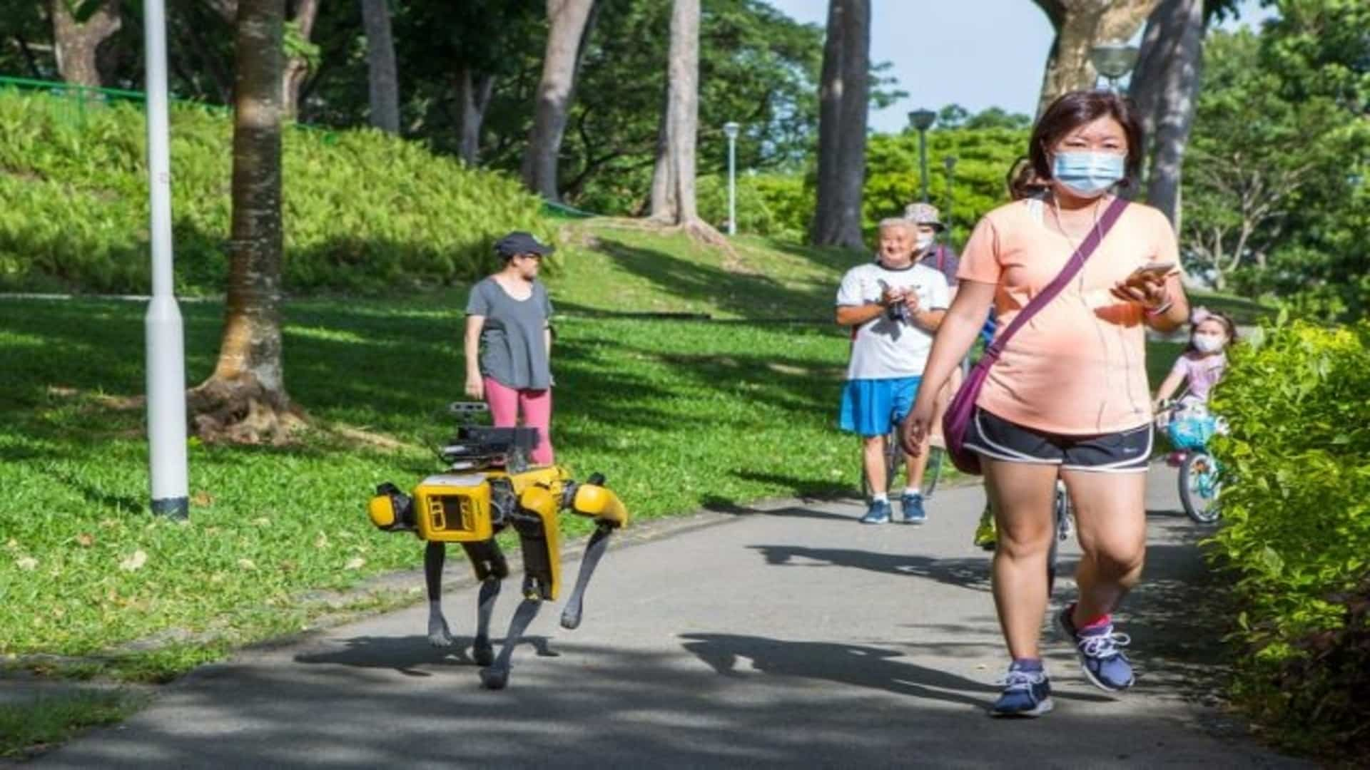 pandemickí roboti