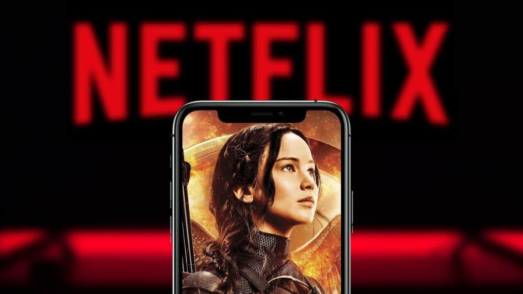 Netflix Hry o život