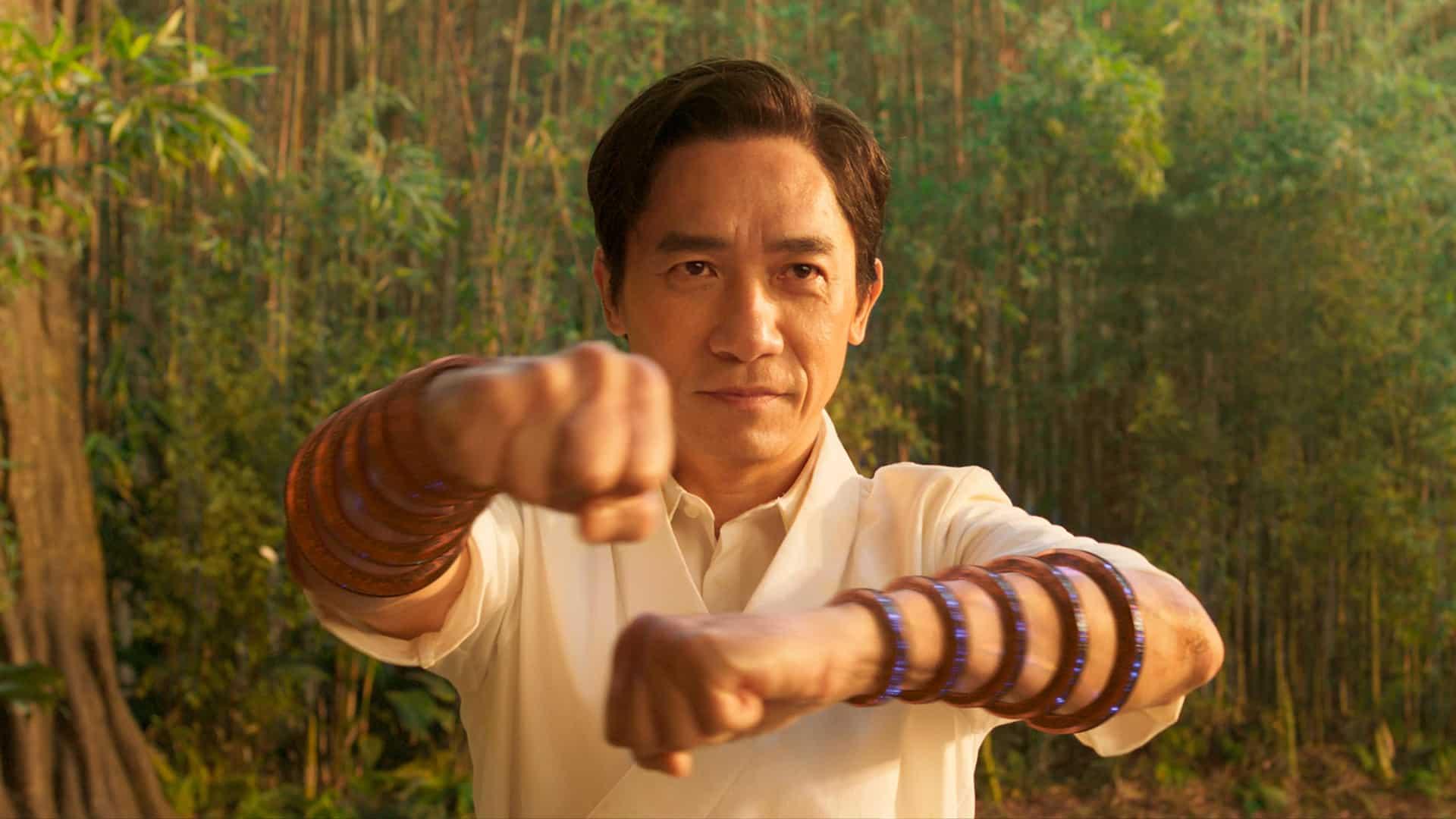 Tony Leung Chiu-wai ako Wenwu
